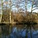 River Whey by samyule1
