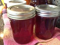 Making homemade plum jam