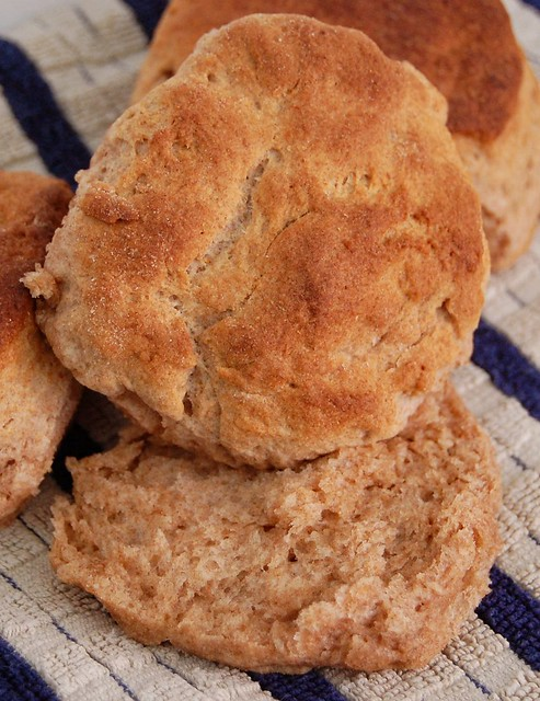 Whole Wheat Buttermilk Biscuits | Flickr - Photo Sharing!