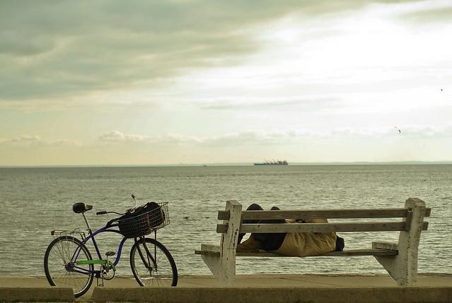 sleeping. bench. seaside.