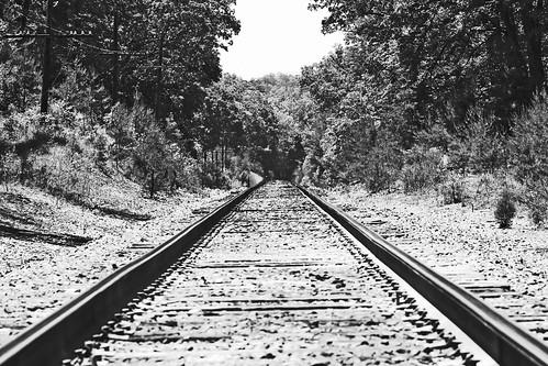 the tracks too . . .