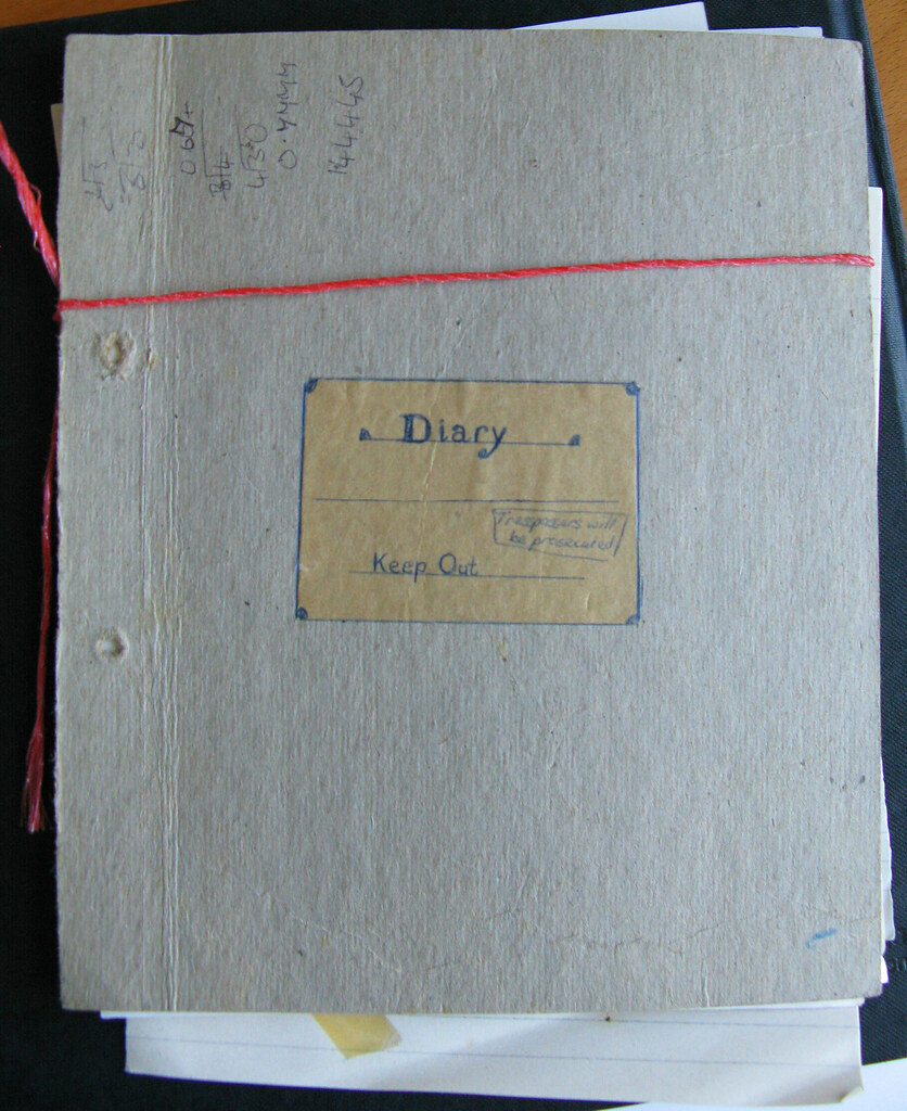 Found! Diary of a Fourteen Year Old Girl