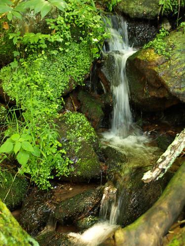waterfall naturalspring stonevalley mycameraiswonderful