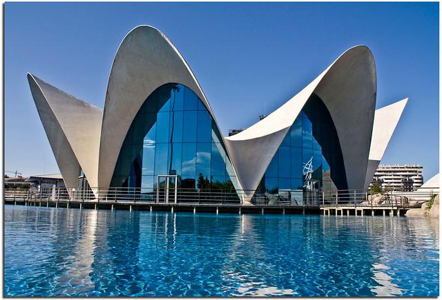 Valencia museo oceanografico flickr photo sharing for Oceanografico valencia