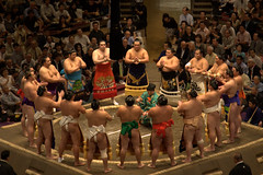sumo(1.0), people(1.0), individual sports(1.0), contact sport(1.0), sports(1.0), professional wrestling(1.0), combat sport(1.0), wrestling(1.0), audience(1.0),