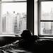 View through NYC by hans jesus wurst