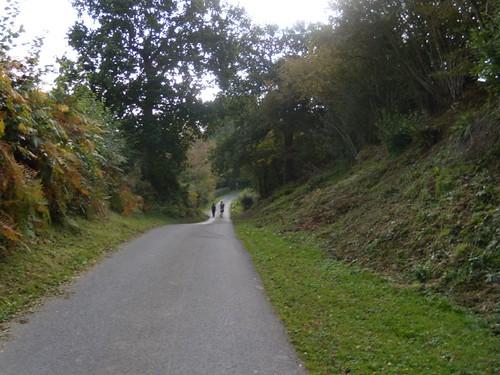 Down a lane