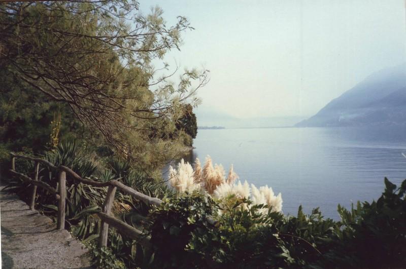 Lake of Locarno