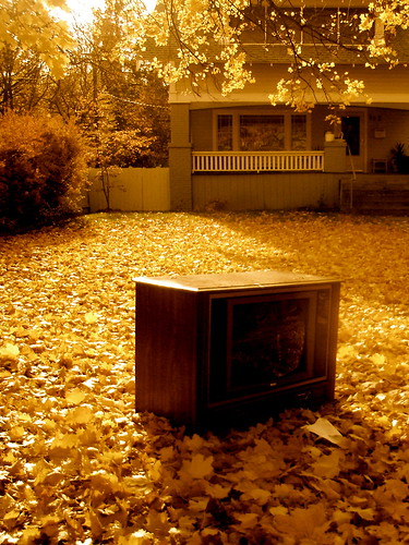 More Autumn TV by Terry Bain
