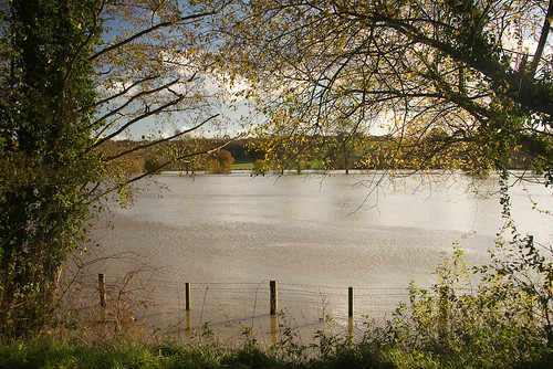 Flooded banks of the River Medway