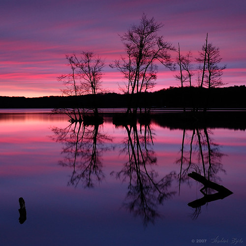 longexposure pink trees lake colors sunrise d50 germany deutschland bravo mood nikond50 chapeau bec reflexions brandenburg naturpark werbellinsee 32mm 500x500 blueribbonwinner firstquality spectacolor schorfheidechorin anawesomeshot megashot gfxmaster theunforgettablepictures dietrichbojko mastersoflifegallery spiritofphotography