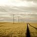 The Fields Energy