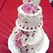 Wilton Cake Decorating Lessons