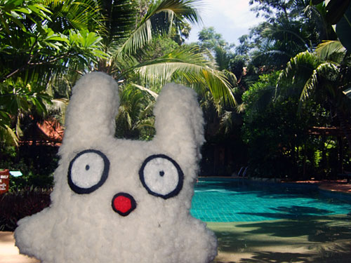 Rabbit Resort