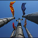 Flags by Timothy van Sas