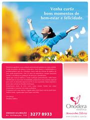 text, flyer, poster, illustration, brand, advertising,