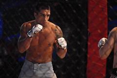 striking combat sports, arm, contact sport, sports, combat sport, shoot boxing, muscle, kickboxing,