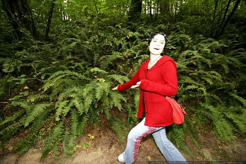 i speak for the ferns...    MG 1226
