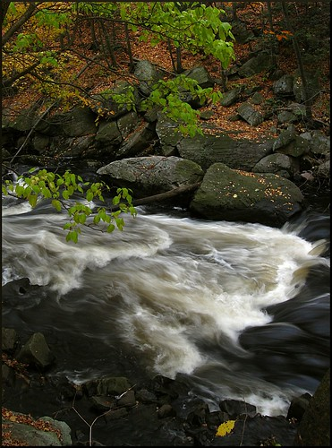 park longexposure autumn trees fall nature water leaves river landscape outdoors newjersey nj boonton rockawayriver gracelordpark