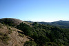 Mt. Tamalpais State Park by Ivo Jansch