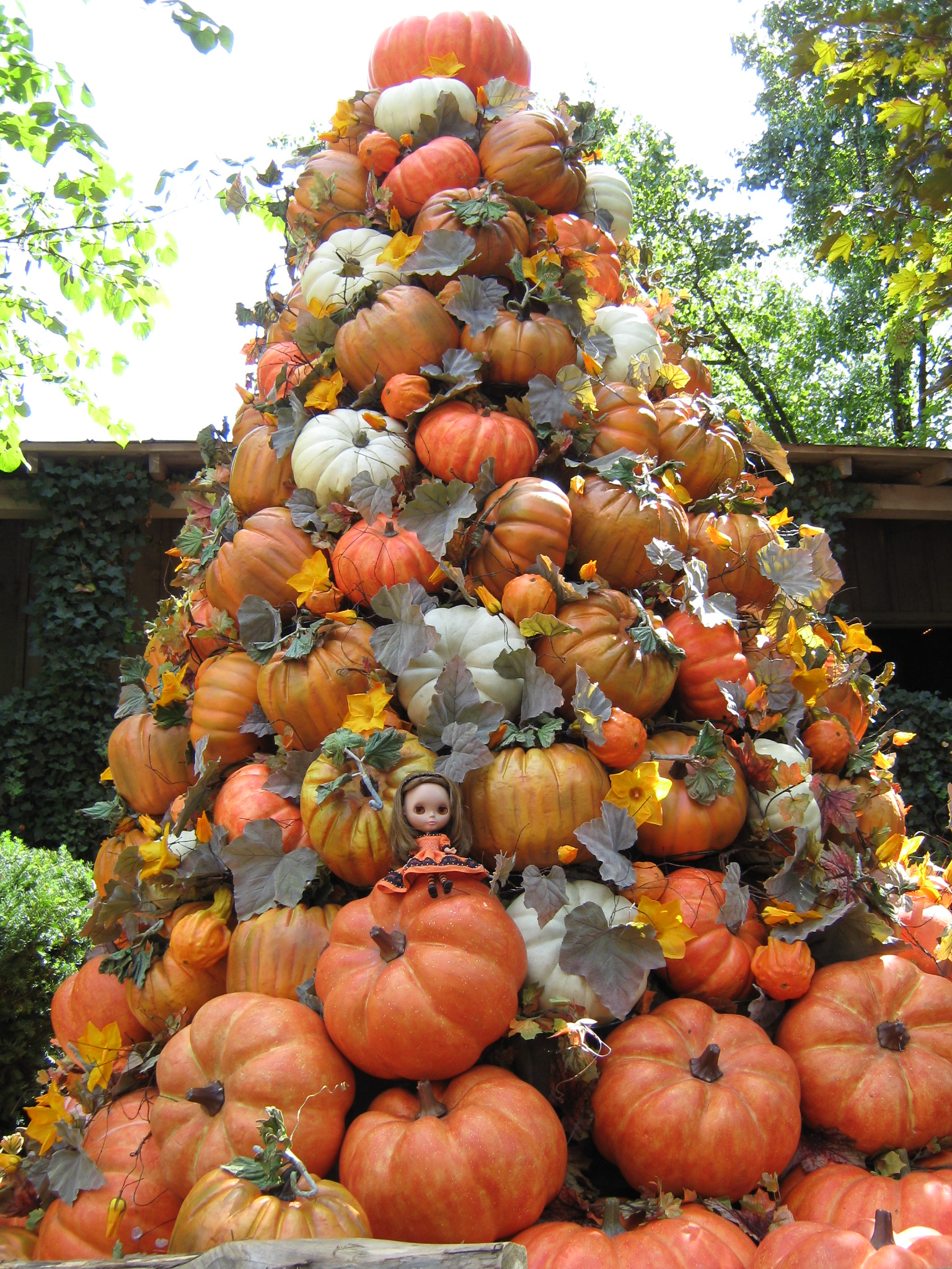 Halloween dress 2008/ Pumpkin Tower at Dollywood