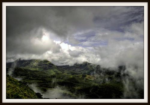 munnar anaimudi eravukulamnationalpark mountainsofsouthindia