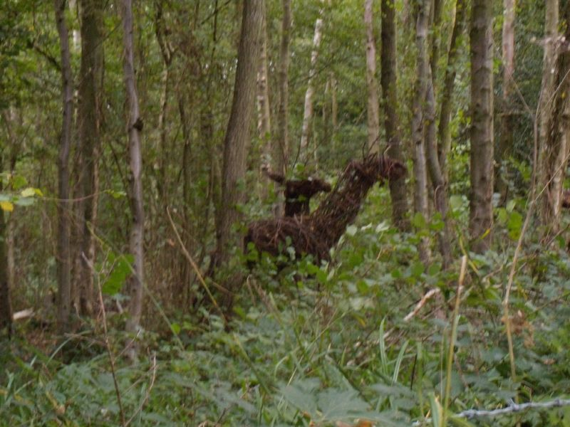 Deer sculptures Ardingley Reservoir. Balcombe Circular via Ardingley Reservoir (summer walk)