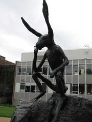 rabbit thinker at Washington U