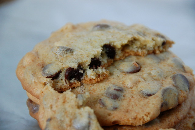 perfect chocolate chip cookie | Flickr - Photo Sharing!