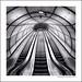 Stairs by Alejandro Bergado