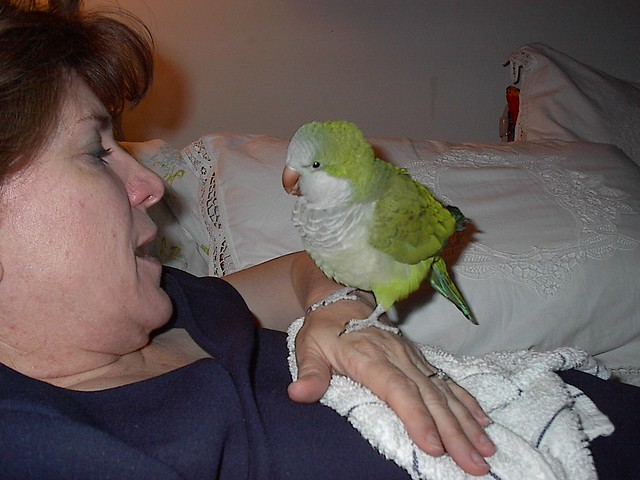 Jo and Scooter