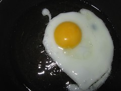 breakfast, egg, food, dish, egg yolk, fried egg,