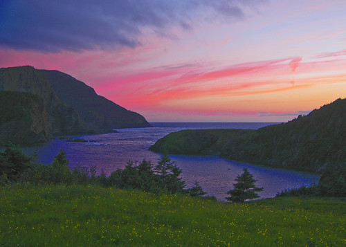 Bottle Cove Sunset
