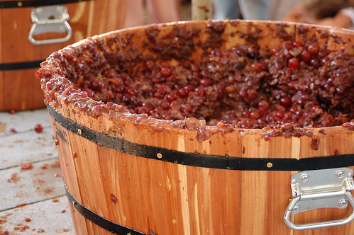 Wine Stomp Barrel