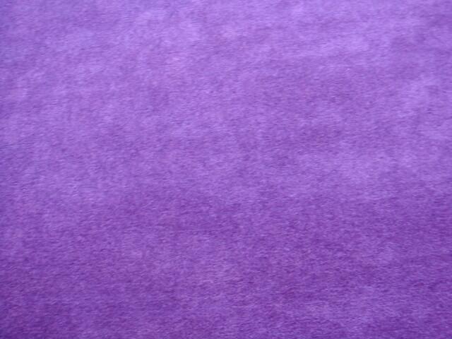 Purple carpet flickr photo sharing for Light purple carpet