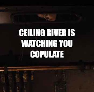 ceiling_river