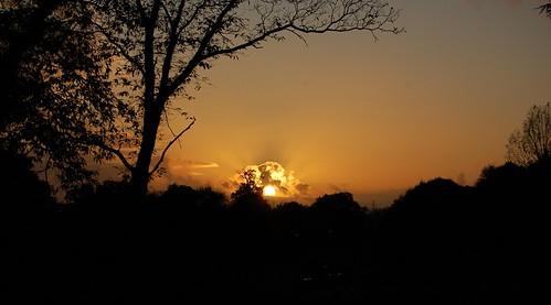 Hestercombe Sunset DSC_0512