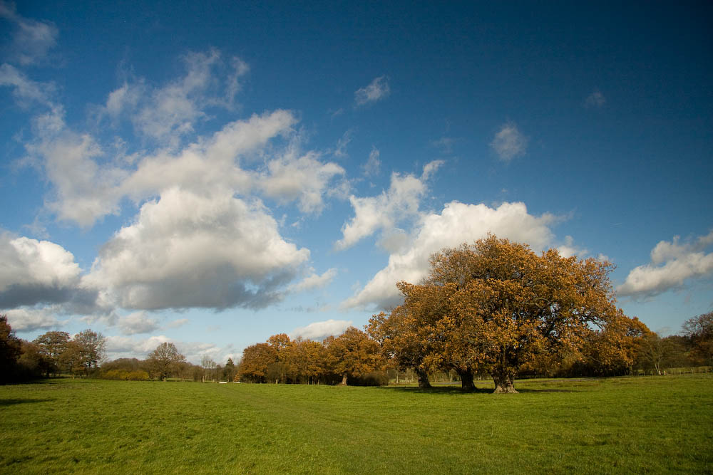Kent in the Autumn The Eden Valley near Penshurst