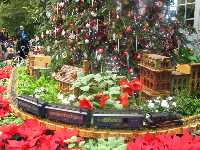 U S Botanic Garden Christmas Tree Flickr Photo Sharing