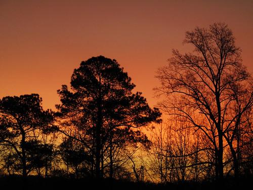 orange sunrise georgia decatur february februarysunrise
