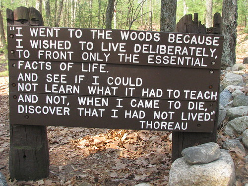 Walden Pond Concord MA Thoreau quote
