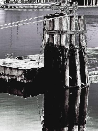 film philadelphia canon kodak tokina riverfront pennslanding dpp eos1n delawareriver zoomlens hss bw400cn blackwhitephotos atx828afpro betterthangood rgbtonecurveadjustment 80200mmf28atxpro