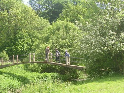 Slightly picturesque bridge