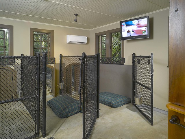 Dog house interior 2 flickr photo sharing for Dog kennel in garage ideas