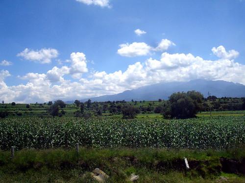 Bello México