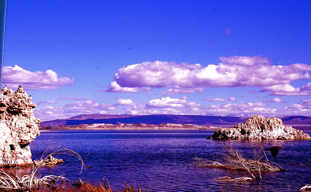 00620028  High sierras Mono Lake.