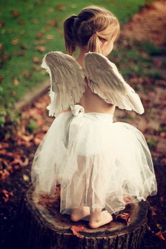 ~Wonder~  Do Angels Really Exist?