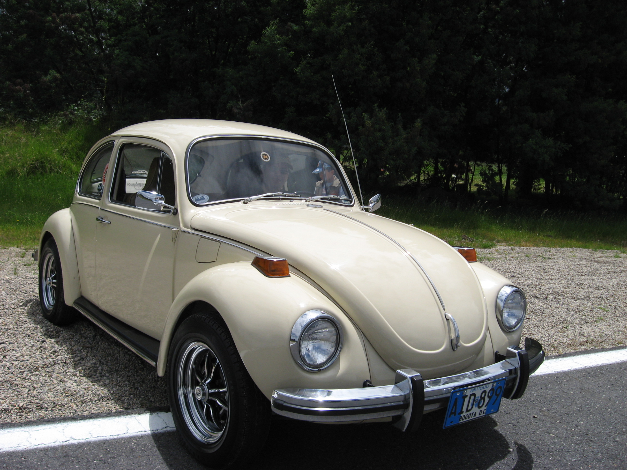 magazines ideas temple vw collection gardener for richard volkswagen sale by classic of and vintage cars auction colorful rolf car frieze craigslist beetle eddisons online