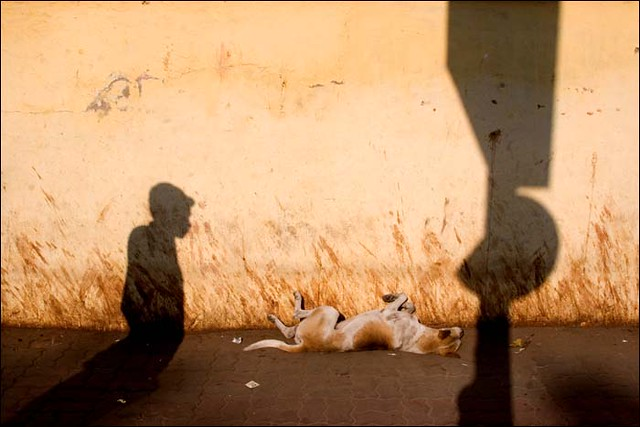 Slumdog - Great Examples of Shadows in Street Photography