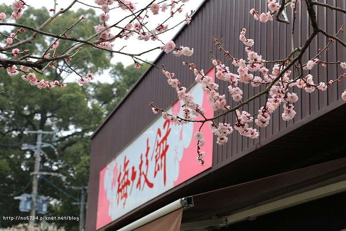 20140301_Fukuoka_0771 F